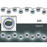 Team Sports America University of Florida Outdoor Safe Battery Powered String Light Set
