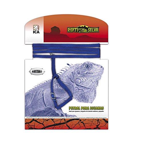 ICA RS1600 Petral para Iguanas: surtido: colores aleatorios