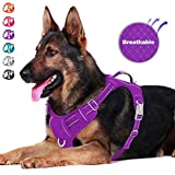 BARKBAY No Pull Dog Harness Front Clip Heavy Duty Reflective Easy Control Handle for Large Dog Walking with ID tag Pocket(Purple,XL)