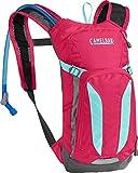 CamelBak Mini M.U.L.E. Kids Hydration Backpack, 50 oz, Azalea/Aruba Blue