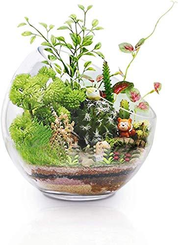"""Ecosides Glasvase Kristallglas Schale Transparent rund Bubble Bowl Vasen kugelvase klar Glas Vase Blumenvase setzen Süßigkeiten, Pflanzen, Blumen, Obst für die Küche Wohnzimmer (7\"""" x7\"""", klar)"""