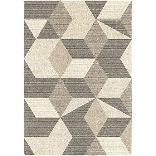 Allen and Roth rugs:Coralyn Brown Geometric Area Rug
