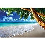 GREAT ART Papier Peint – Palmiers de Plage – décoration Murale rêve des...