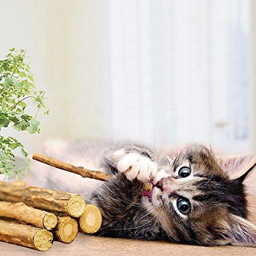 WoLover Silvervine Sticks for Cats, Natural Catnip Sticks Matatabi Chew Sticks Teeth Molar Chew Toys for Cat Kitten Kitty (12 PCS)