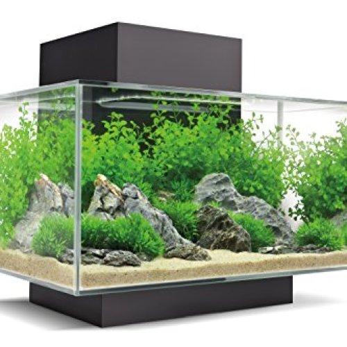 Fluval Edge 2.0 Black Aquarium Kit, 6 Gallon, 30 LBS