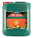 CANNA CA1480 Bud Phase Additive-0-10-11 NPK Ratio 5 L PK 13/14, Green