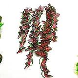 Feli546Bruce Accessoires pour Aquariophilie Artificielle Plante de Vigne...
