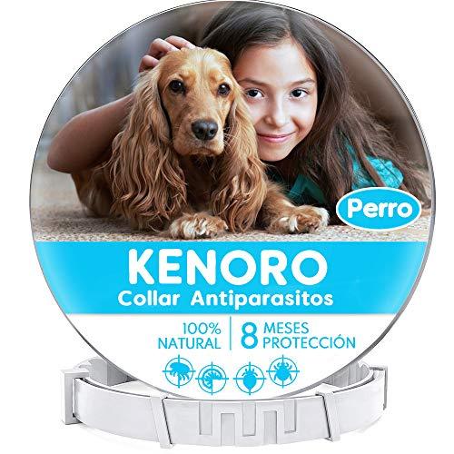 KENORO Collar Antiparasitos Perro, Collar Antipulgas Perro contra...