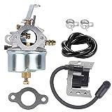 ATVATP 632272 Carburetor for Tecumseh 632230 H30 H50 H60 HH60 HH70 Snow Blower & 34443 34443A 34443B Ignition Coil