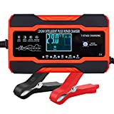 ABLY 10-Amp Battery Charger Automotive, 24V and 12V Car Battery Charger, Battery Maintainer with Temperature Compensation for Car, Lawn Mower, Motorcycle, Boat, SUV and More
