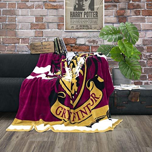 Character World kuschelige Flauschdecke Fleecedecke Harry Potter · 150 x 200 cm · Hogwarts-Schule...