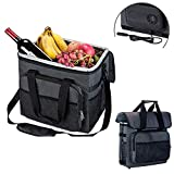YAPASPT Electric Car Cooler - Collapsible Soft Cooler Warmer Bag 36-Cans for Lunch Picnic Camping Hiking Beach BBQ Party