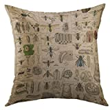 Mugod Decorative Throw Pillow Cover for Couch Sofa,Biology Vintage Insects Entomology Taxonomy Nature Home Decor Pillow case 18x18 Inch