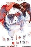 Harley Quinn Skull Artwork Comic Book Art Print Poster 24x36