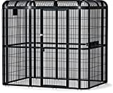 A&E Cage Co. Walk in Aviary - 1/2' Bar Spacing, 85'x61', Black