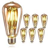 DASIAUTOEM Ampoule LED Edison, Ampoule E27 Vintage Edison LED Rétro Ampoule 4W...