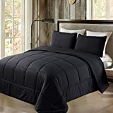 Exclusivo Mezcla Lightweight 2-Piece Comforter Set for All Seasons, Down Alternative Comforter with 1 Pillow Shame, Twin Size, Black