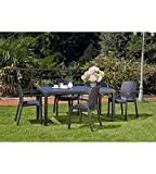 Garten-Tisch Fixed Geflochtene Stil Rattan anthrazit - 4