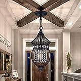 Black Chandeliers Globe Crystal Chandelier Lighting Farmhouse Lighting Fixtures 1 Light 17045