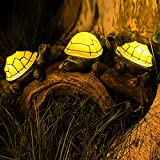 Solar Turtles Outdoor...image