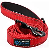 Max and Neo Small Dog Reflective Nylon Dog Leash - We Donate a Leash to a Dog...