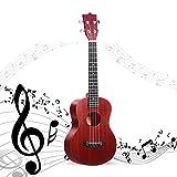 HAIPENG Sopran Ukulele Set Mahagoni Mit Tasche, 4 Saiten 21 Zoll Kleine Hawaii Gitarre Einsteiger for Kinder, Schüler Erwachsene (Color : D, Size : 21')