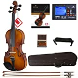 Cecilio CVN-300 Solidwood Ebony Fitted Violin with D'Addario Prelude Strings, Size 1/4
