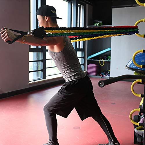 51DU6RE50EL - Home Fitness Guru