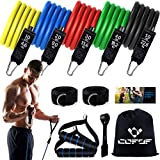 Resistance Bands with Handles, Exercise Bands with Door Anchor, Legs Ankle Straps, Carry Bag for Resistance Training, Physical Therapy, Yoga, Home Workouts