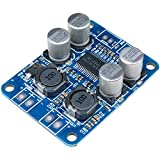 ICQUANZX TPA3118 BTL 60W Mono Digital Audio Power Amplifier Board Module DC 12V-24V for Audio System DIY Speakers