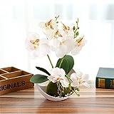 You&Me bonsaï Orchidée Papillon Fleur Artificielle Blanc Pot de Fleurs de...