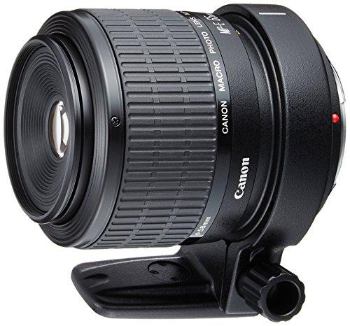 Canon 単焦点マクロレンズ MP-E65mm F2.8 1-5Xマクロフォト フルサイズ対応