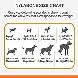 Strukturierter Nylabone Dura Chew Rindfleisch-Jerky-Power-Chew – Kauknochen für extrem stark kauende Hunde - groß – für Hunde bis 23 kg - 9