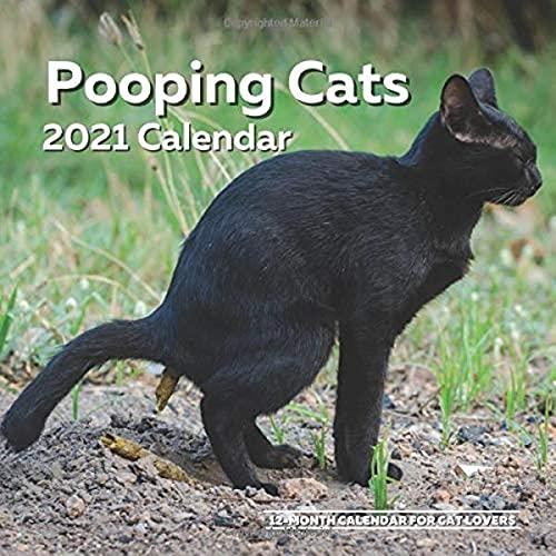 Pooping Cats Calendar 2021: Funny Cat Lover Wall Calendar...