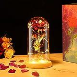 PREUP Rose Eternelle sous Cloche, La Belle et la Bête Rose en Verre avec Lumières LED Pine Base pour Fête des Mères Saint Valentin Anniversaire Mariage Maison Décorations