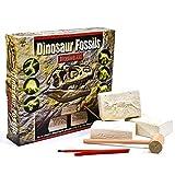 Kit Scavo Dinosauri Fossili - Sterra 6 Diversi Dinosauri