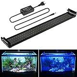 BELLALICHT 70-90 cm éclairage Aquarium LEDs 90 Blanc + 18 Bleu Lampe 18W 2...