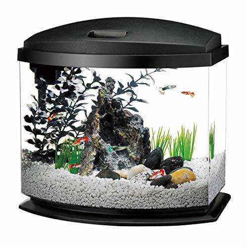 Aqueon LED Minibow Aquarium Starter Kits with LED Lighting, 5 Gallon, Black