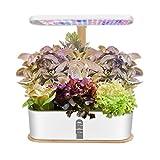 Indoor Hydroponic Herb...image