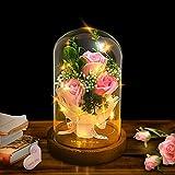 shirylzee Rose Éternelle sous Cloche Lumière de Dôme en Verre avec Lumière LED et Base, Fleur Artificielle Décoration Cadeau pour Fête des Mères Saint Valentin Mariages Anniversaires Noël (Rose)