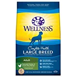 Wellness Complete Health Natural Dry Large Breed Dog Food, Chicken & Rice,...