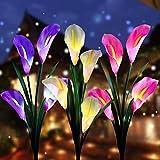 Aloudy Solar Garden...image