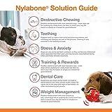Strukturierter Nylabone Dura Chew Rindfleisch-Jerky-Power-Chew – Kauknochen für extrem stark kauende Hunde – groß – für Hunde bis 23 kg - 5