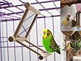 BirdSwing, Parrot Cage Toys,Swing Hanging Play with Mirror for Macaw African Greys Parakeet Cockatoo Cockatiel Conure Lovebirds Canaries By Old Tjikko,1 PC (3.7x3.5 x3.5inch)