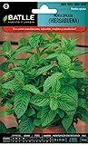 Semillas Aromticas - Menta Spicata (Hierbabuena) - Batlle