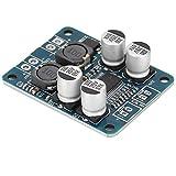 ASHATA Digital Power Amplifier Board,TPA3118 Mono Sound Channel Digital Power Amplifier Board Module Chip 1X60W 8~24VDC, Digital Amplifier Module Mono Power Amplifier Module 60W
