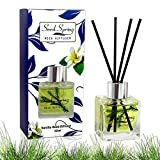 Seed Spring Reed Diffuser Fragrances Reed Diffuser Set with Sticks,Vanilla Scent Incense Oil,Essential Oil Air Freshener for Home,Office,Gym,and Room Diffuser, and Interior perfumes 50 ml/ 1.7 oz