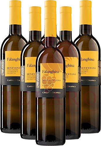Falanghina IGP Cantina Di Solopaca Benevento 2019 Promo Vini Bianchi Campani Offerta 6 Bottiglie