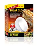 Exoterra Solar Glo Ampoule Simulant Lumière du Soleil pour...