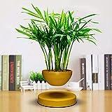 YXZQ Levitating Air Bonsai Pot Maceta de Flores Levitacin magntica Suspensin Flor Maceta Flotante Planta en Maceta para decoracin de Oficina en casa, Beige